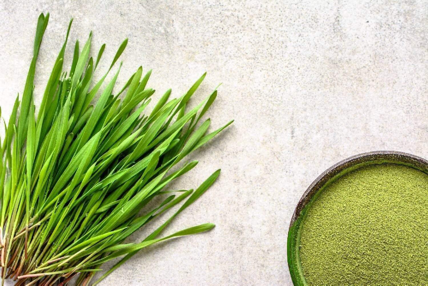 image de l'ingredient Le Jus d'herbe d'orge