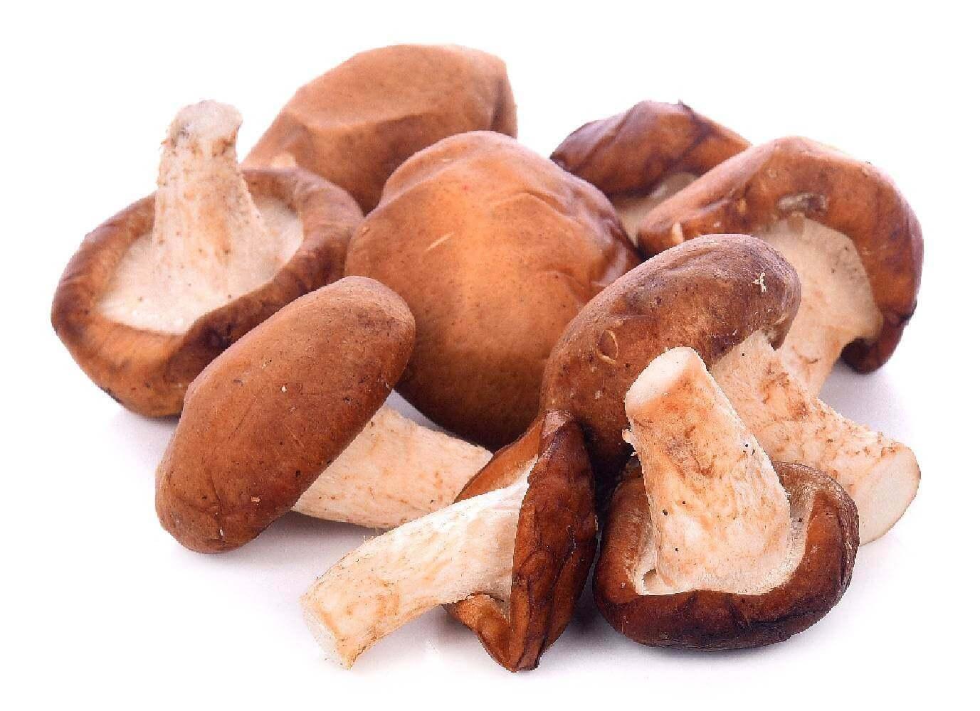 image de l'ingredient Shii ta ke